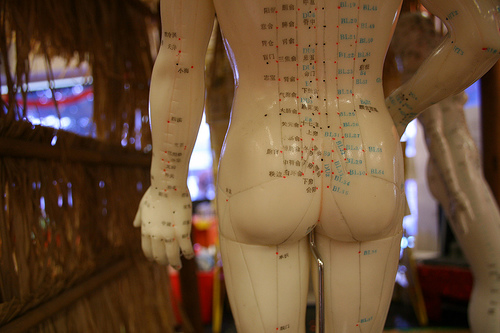 Accupuncture Ass by Zoomar
